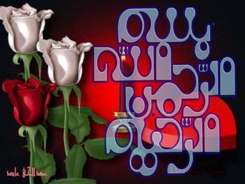 Islamic Calligraphic Art 12873959_bism55